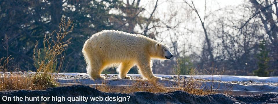 High Quality Website Design